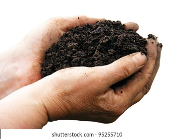 Soil in woman arms isolated