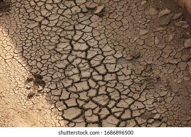 soils that dry and crack from thirst