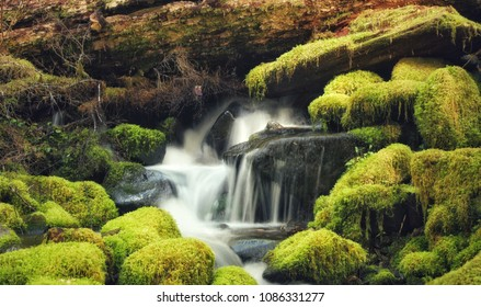 Sol Duc Falls in Port Angeles, Washington among moss covered rocks
