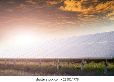 solar battery field against sunset