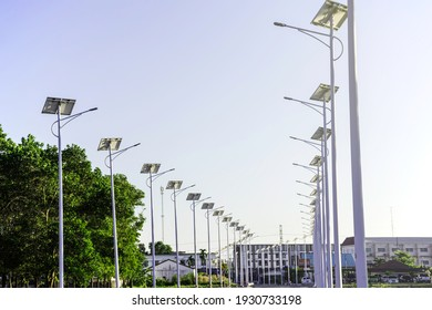 Solar cell lamp electricity system for alternative power energy on street with green tree nature, Future renewable supply source