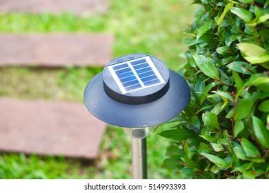 Solar cell lamp in gardent