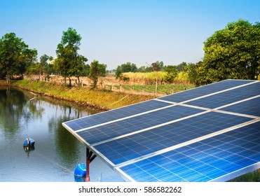 Solar Cell Panels for Water Pumping  in Thai Temple 's Pond