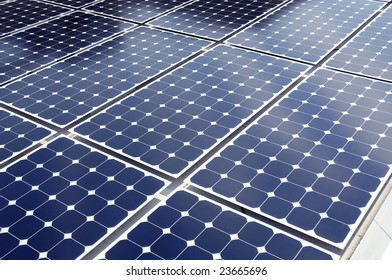 solar cells laid out in a grid