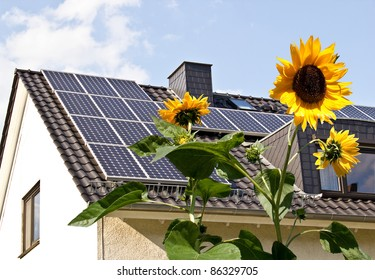 Solar cells on a roof with sun flowers in the foreground