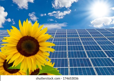 Solar cells and sunflower on a sunny day