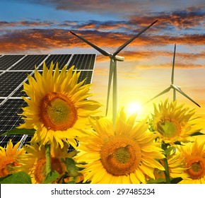 Solar energy panels with wind turbines in sunflower field at sunset. Green energy.