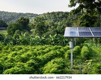 Solar Energy For Thai Agriculture
