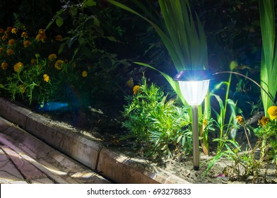 solar lanterns garden light with shrubs and tile at home
