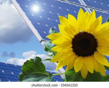 solar panel / solar energy
