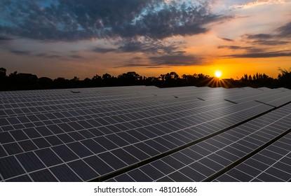 Solar panel, solar farm with colorful sunrise sky