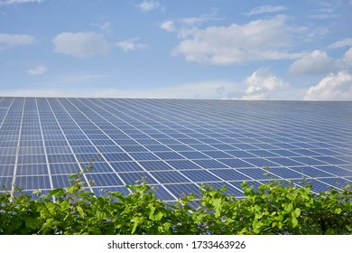 Solar panel station for green renewable energy production with blu sky and green plants
