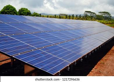 Solar Panels built on a plantation in Hawaii