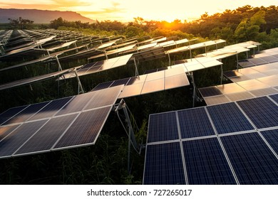 Solar panels (solar cell) in solar farm with blue sky and sun lighting.