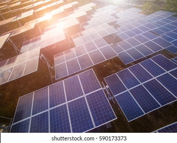 Solar panels (solar cell) in solar farm with  sun lighting to create the clean electric power