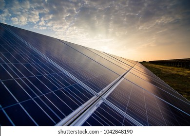 Solar panels closeup on sunset background