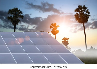 Solar panels energy on coconut palm trees on natural background. Technology concept or solar farm.