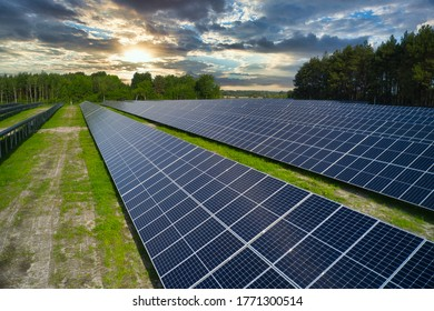 Solar panels in nature. Green renewable energy of the sun.