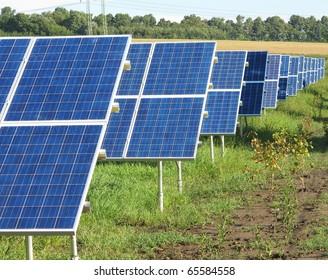 Solar panels on the field
