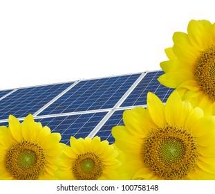 Solar Panels on sunflowers