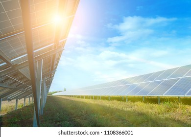 Solar panels, photovoltaic, alternative source environmentally friendly energy. In the backlight sunbeam light.