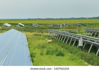 Solar panels with a sheep on a cloudy day in Normandy, France. Solar energy, modern electric power production technology, renewable energy concept. Environmentally friendly electricity production.
