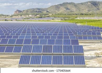 Solar panels as source of renewable ecologic energy