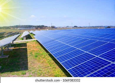 Solar panels with sun on a clear day