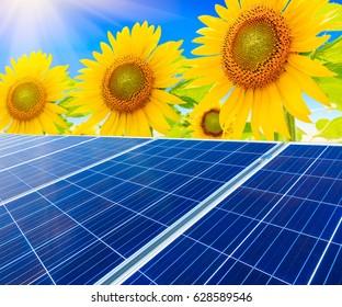 Solar panels and sunflowers landscape