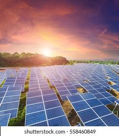 Solar panels with sunset  sky (Solar farm)