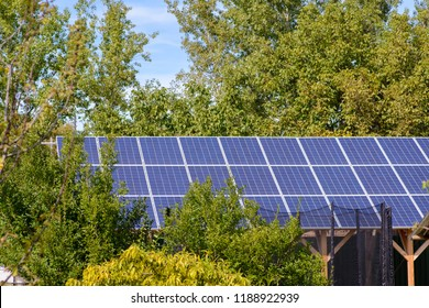 Solar panels in the yard of a suburban house