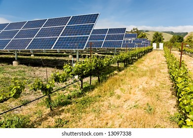 Solar photo voltaic collectors powering a California vineyard, reducing the carbon footprint