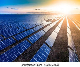 Solar photovoltaic panels in the backlight