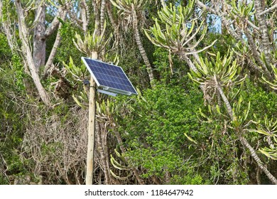 A solar power panel mounted to a wooden pole. This image can be used to represent the concept of renewable energy or living off the grid.