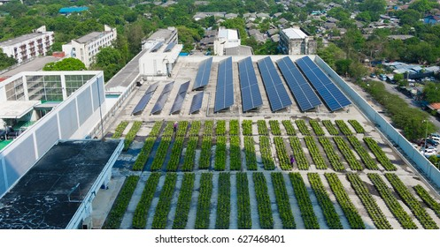 Solar roof and green roof on high building