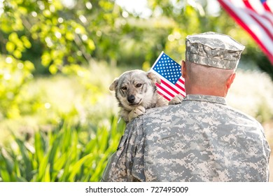 Soldier with a dog  and american flag on a blurred background