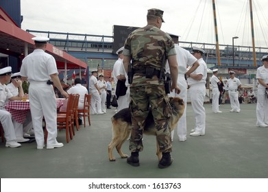 soldier, dog and sailors