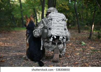 Soldier with military working dog in forest