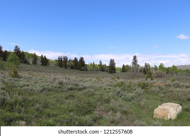 Soldier Summit Utah in May 2018 with a boulder in the foreground and sagebrush, pine trees and quaking aspen.  Taken a couple months before the Coal Hollow fire burned within 3 miles of this area.