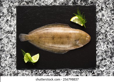 Sole fish on ice on a black stone plate top view