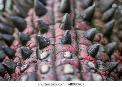 Solec Kujawski, Poland -  August 2017 :  Close up of a body spikes of a life sized ankylosaurus dinosaur statue