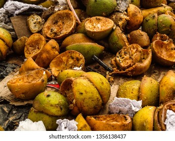 Soledade, Paraíba/Brazil - April 1, 2019: Oranges fruit consumed and in a state of decomposition with papers in the dump, and still many flies. photo taken at the dump of Soledade, Paraíba, Brazil.