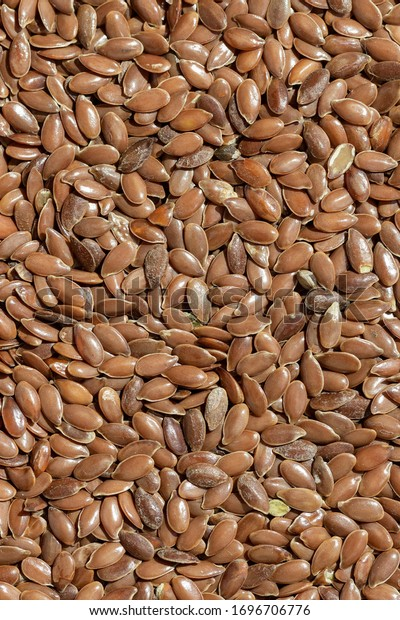 solid-background-peeled-flaxseed-600w-16