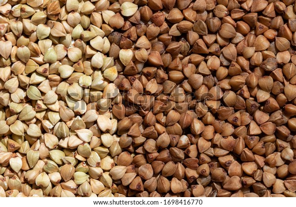 solid-background-raw-fried-buckwheat-600