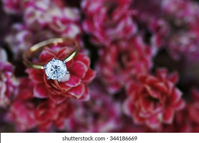 A solitaire ideal cut diamond ring ina field of red flowers.