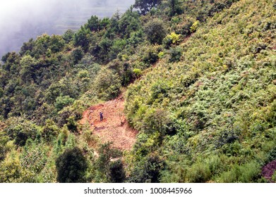 Solitary farmer in the distance plowing a small patch of land on the side of a hill in the midst of trees and lush vegetation in the mountains of Yunnan, China