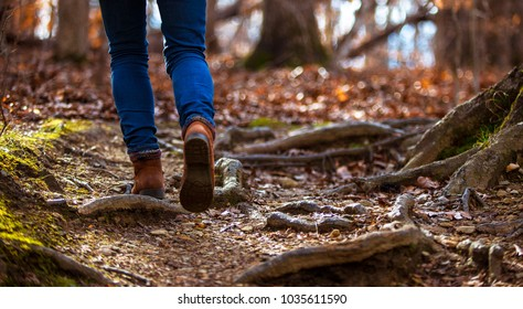 Solitary female hiker on a hiking trail in North Carolina, view from the ground of legs and boots walking.