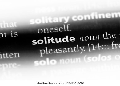 solitude word in a dictionary. solitude concept.