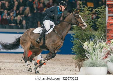 SOLNA, SWEDEN - NOV 24, 2016: Ride and drive competition in the Sweden International Horse Show at Friends arena.