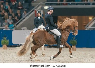 SOLNA, SWEDEN - NOV 25, 2016: Icelandic Master Challenge event in the Sweden International Horse Show at Friends arena.